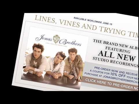 Jonas Brothers Fly With Me  w lyrics