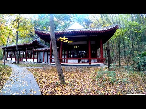 Hiking around DIDA & HUST campuses | Silk Road Study | Wuhan, China
