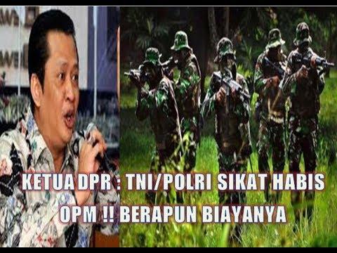 KETUA DPR : TNI/POLRI JANGAN LEMBEK !!  HABISI OPM BERAPAPUN BIAYANYA ,SOAL HAM URUSAN NANTI