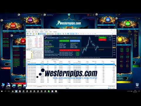 Low Latency Trading Arbitrage Software: Amana Capital Profit 366 %