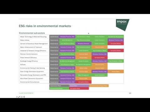 Actionable Opportunities for ESG & Impact Strategies in Public Equities