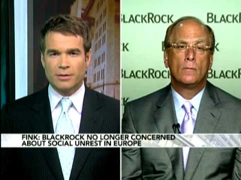 BlackRock's Fink Interview