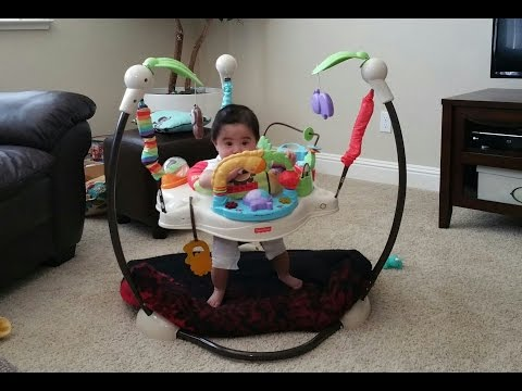 Fisher-Price Luv U Zoo Jumperoo Review With 8 Month Old