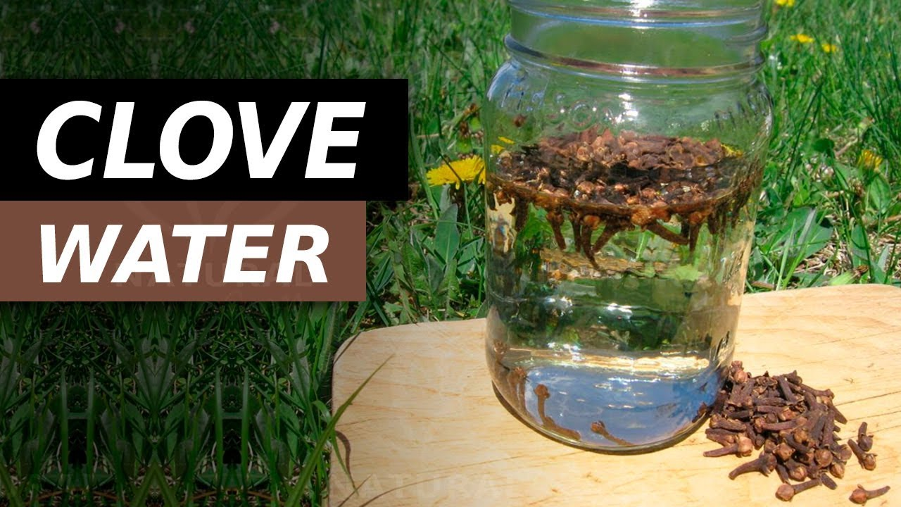 Drink Clove Water Everyday For These Amazing Benefits