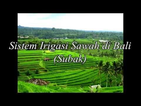Subak (Sistem Perairan Sawah di Bali)