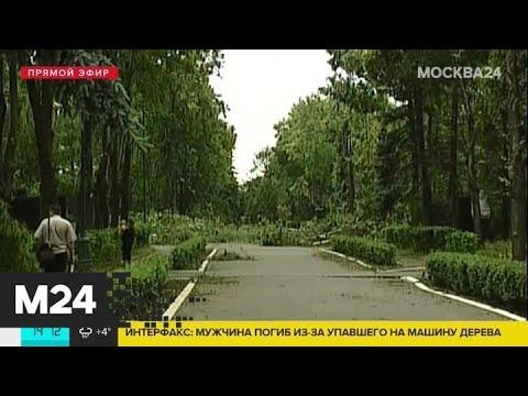 Видео: Какие самые разрушительные ураганы были в Москве - Москва 24