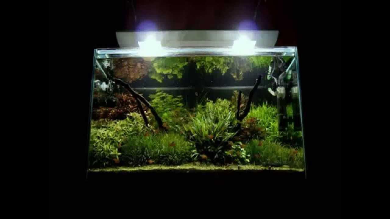Freshwater Aquarium Design Ideas wide aquarium design german Aquarium Rock Design Youtube