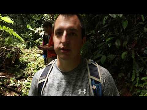 Tadpoles & Fungus