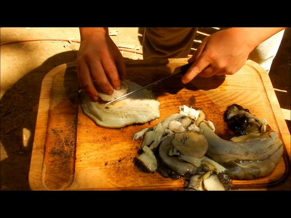 how to clean an abalone