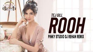 Rooh (Remix) | Tej Gill | Dj Rehan qatar | Tere Bina Jeena Saza Hogaya ve saanu