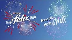 Saint FELIX® 2020