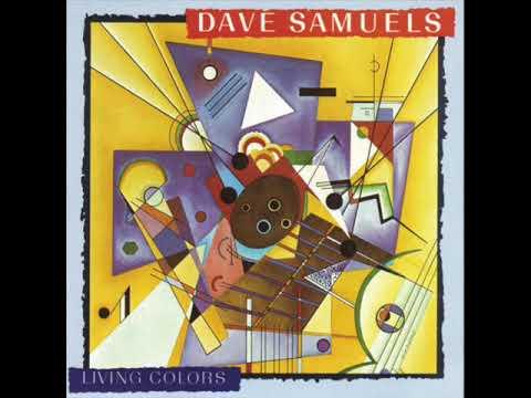 """Dave Samuels """"New Math"""" ©1988"""