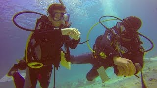 Youngest Scuba Diver in Egypt