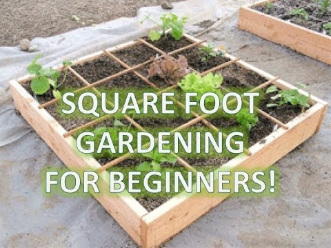 How To Build A Garden Box Square Foot Gardening Youtube - square foot raised bed garden design