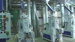Punjab Basmati Rice Ltd.