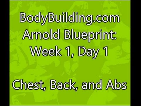 Arnold blueprint week 1 day 1 chest back and abs youtube arnold blueprint week 1 day 1 chest back and abs malvernweather