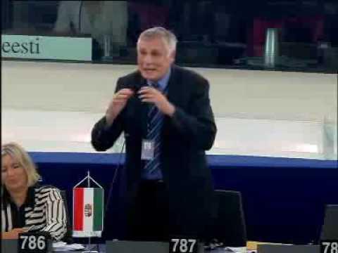 Zoltán BALCZÓ @ Debates - Monday, 7 September 2015 - Situation of fundamental rights in the EU (2013