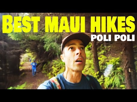 Maui Travel Guide | Poli Poli Maui, Hawaii