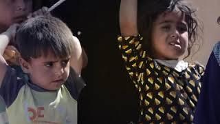 Миграция во время войны: исследование Международного Комитета Красного Креста