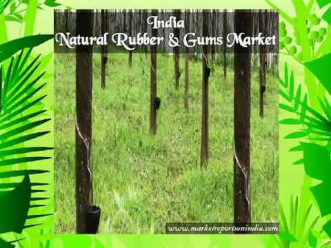 India Natural Rubber And Gums