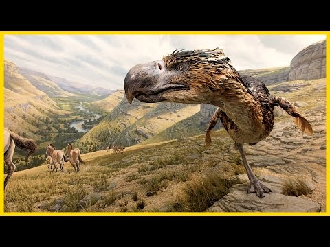 Terror Raptor: The Prehistoric King Of The Beasts - HD Documentary