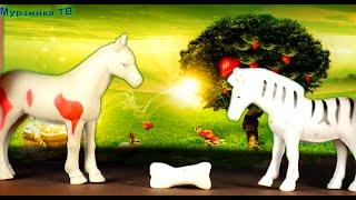 Животные и любовь. Мультик для детей.  Мурзилка ТВ