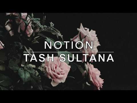 Notion - Tash Sultana Lyrics