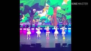 Red Velvet Joy injured at Red Mare in Singapore