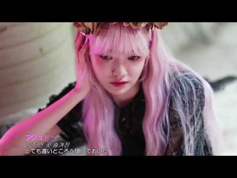 [FMV] EVERGLOW - Hush(日本語字幕) ▶2:45