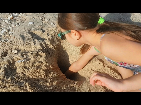 Kids playing with sand on the beach.Video from KIDS TOYS CHANNEL 2017