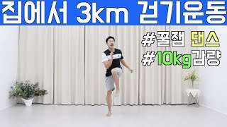 따라하기 쉬운 다이어트 댄스 무조건 살빠지는 3km 걷…