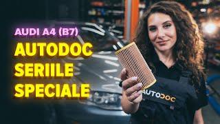 Montare Filtru ulei AUDI A4 (8EC, B7): video gratuit