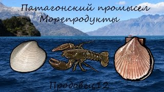 Русская рыбалка 3.99 - Патагонский промысел - Морепродукты