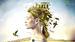 SoundGate - Migration