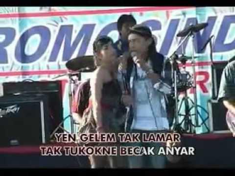 New - Campursari KOPLO-NJALUK PIJAT-Rindi Safira feat Agung Juanda