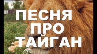 ПАРК ТАЙГАН  ДЕД АРХИМЕД