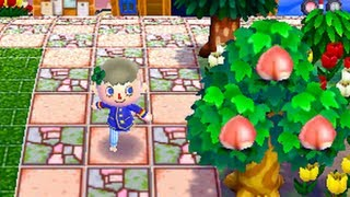 Dream Diary - Animal Crossing: New Leaf | Pretty Patterns