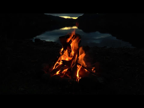 Beautiful Campfire at the Lake with Crackling Fire, Crickets and Owls Sounds (HD)