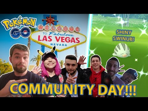 SWINUB COM DAY IN POKEMON GO! Feat. PkmnMasterHolly, Mystic7, JTGily, The Kruse Ship, Secret League thumbnail