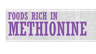 Foods Rich in Methionine - Foods High in Amino Acid - BENEFITS OF WELLNESS