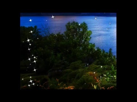 Футажи эффкты   Веселые светлячки