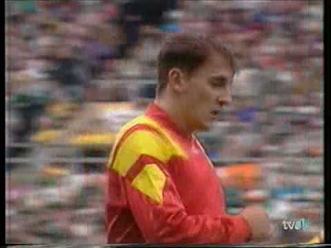 1994 FIFA World Cup Qualifiers - Ireland V. Spain