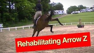 Rehabilitating Arrow Z part 1 thumbnail