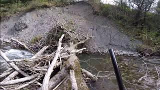 Форелевая рыбалка в горных реках.