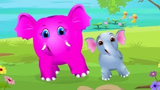 Baby Elephant Song   Nursery Rhymes And Songs For Children