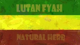 Play Natural Herbs