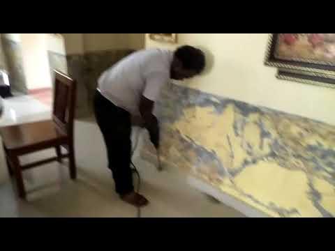 Pest Control Services in Chennai - [SAKTHI PEST CONTROL]