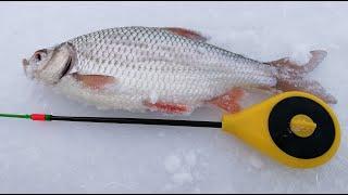 Хитрая плотва рыбалка на безмотылку и жерлицы на щуку Зимняя рыбалка 2019