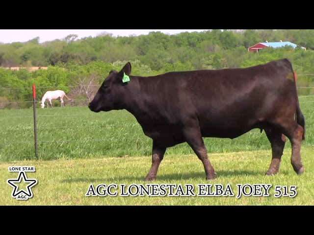 AGC Lonestar Elba Joey 515