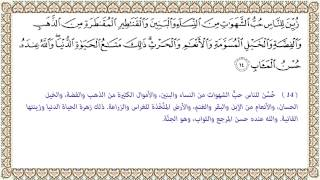 التفسير الميسر الآية 14 من سورة آل عمران 003